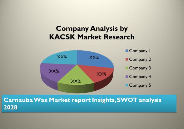 Carnauba Wax Market report Insights, SWOT analysis 2028