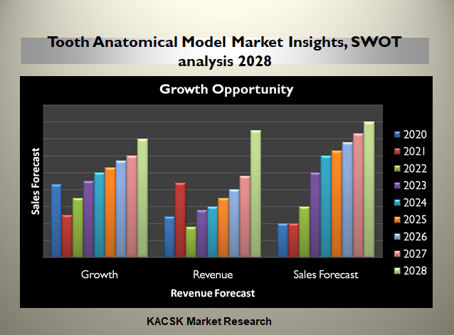 Tooth Anatomical Model Market Insights, SWOT analysis 2028